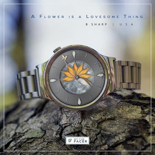 flower%20-%20orange%201sm